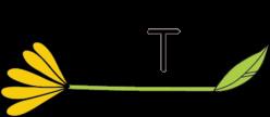 アロマハンドトリートメント協会ロゴ